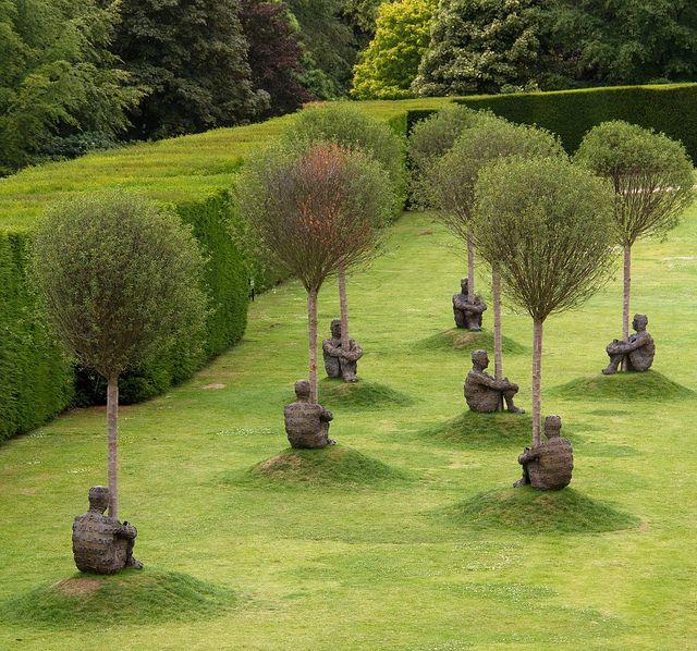 עצי פסלים